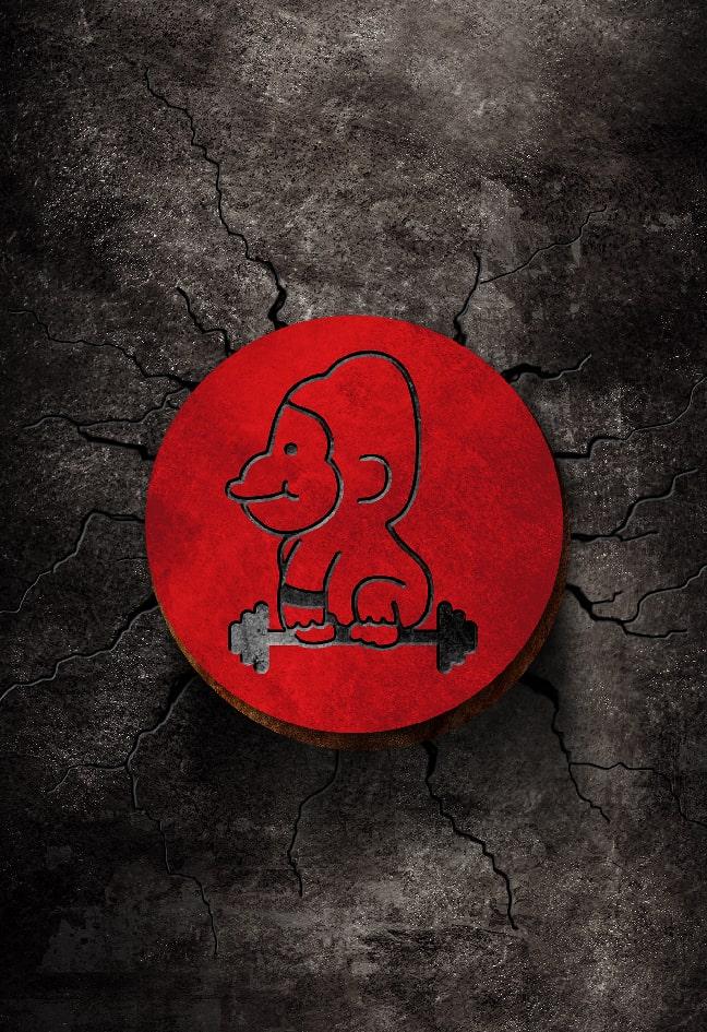 Gora Wellness Premium Fittness Club Cesa banner logo